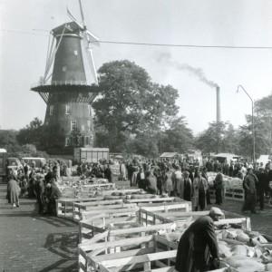 onsoudleiden.nl_0019_beestenmarkt-723×1024